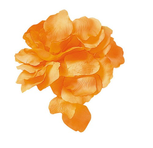 Petali Arancio