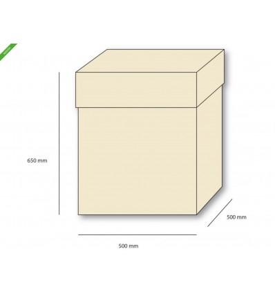 box-surprise