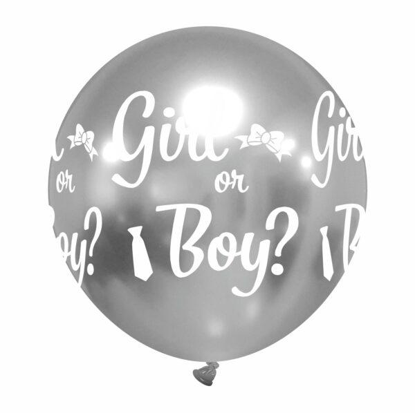 girl or boy argento